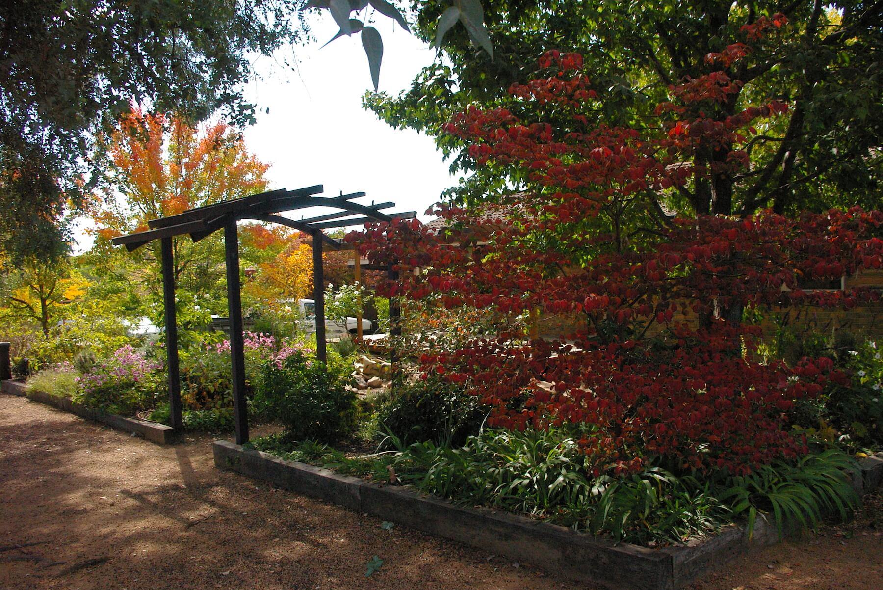 Gardens archive - Open Gardens Canberra